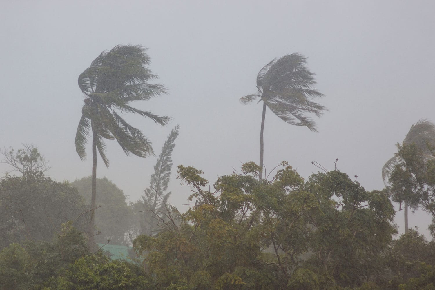 What Do I Need to Know About Hurricane Safety?